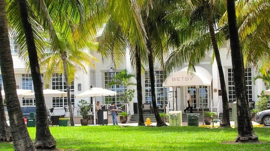The Betsy - South Beach : View from Ocean Drive garden