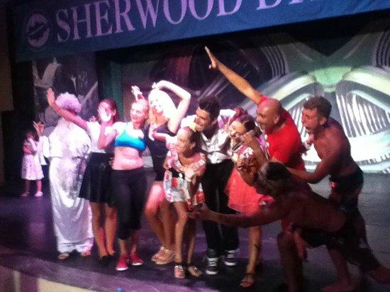 Sherwood Dreams Resort: Animation Team  30/7/14