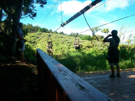 Kapalua Ziplines : about to go