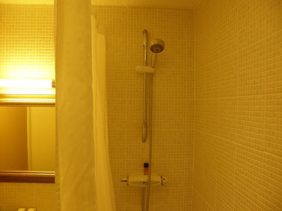The Palace Hotel : Tired shower