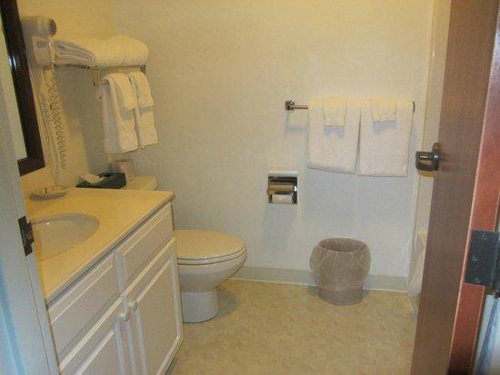 Camden Riverhouse Hotel and Inns: bathroom