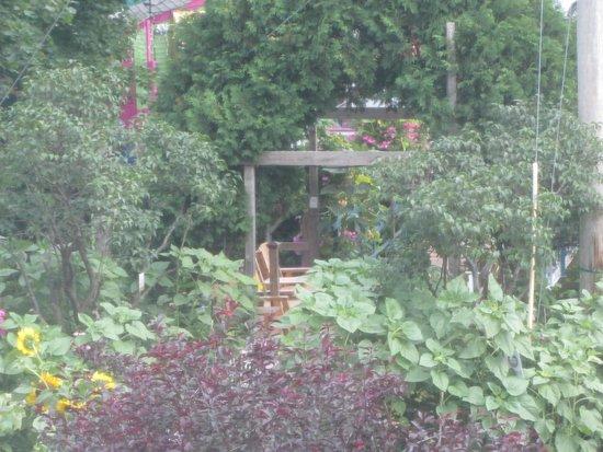 Camden Riverhouse Hotel and Inns: footbridge view