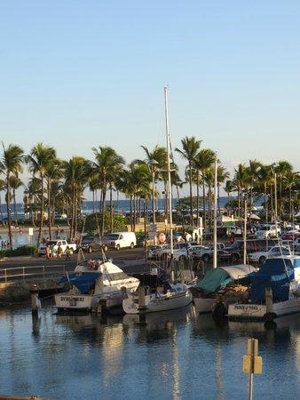 Waikiki Marina Resort at the Ilikai: Marina behind the resort. Beautiful sunsets!