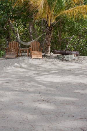 Guana Island: Part of the main beack area