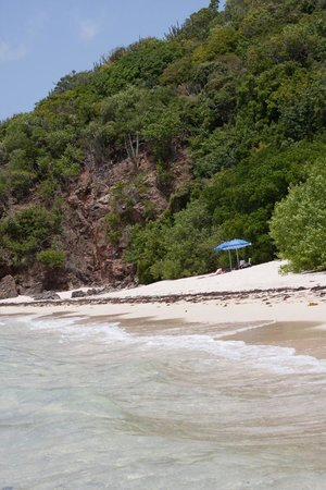 Guana Island: Bigelow beach during our castaway picnic