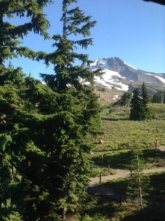 Timberline Lodge: Mt. Hood View