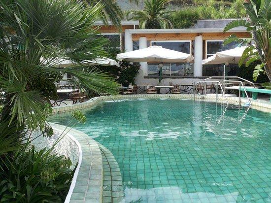 Park Hotel & Terme Romantica: una della piscine termali