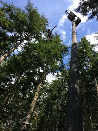 Zip World Fforest: Powerfan plummet
