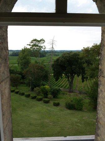 Chateau Fleur de Roques: Vue de la chambre 23