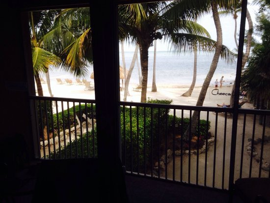 Cheeca Lodge & Spa: View from our bungalow