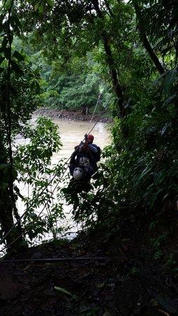 Selva Verde Lodge: Van boom tot boom over rivieren en diepe dalen.