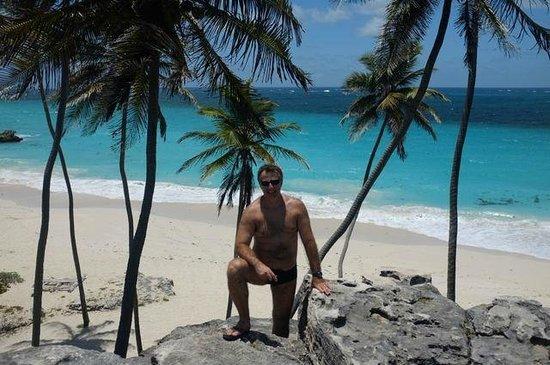 Bottom Bay: Paradisiaca