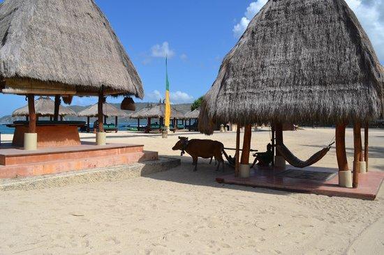 Novotel Lombok: Resort beach