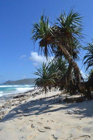 Novotel Lombok: Beach east of the resort