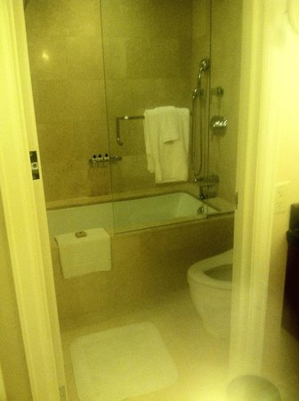 The Ritz-Carlton, Chicago: Shower/Tub