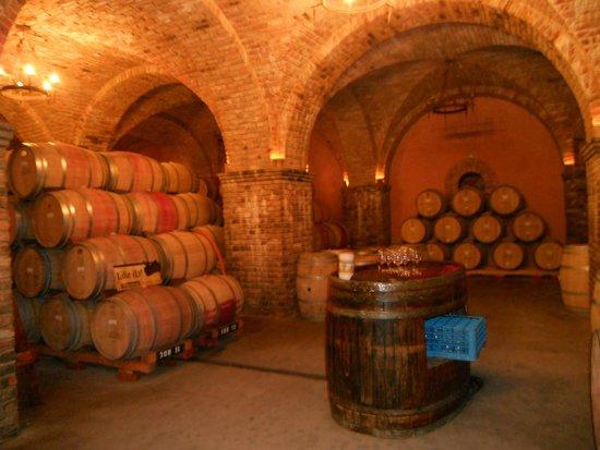 Castello di Amorosa: Castle Tour