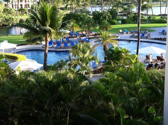 Mauna Lani Bay Hotel & Bungalows : View of Pool Area