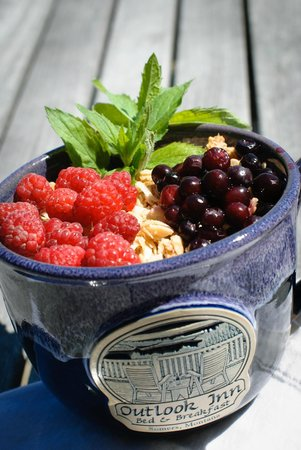 Outlook Inn Bed and Breakfast : Fresh raspberries from the garden and huckleberries hand picked from nearby mountains!