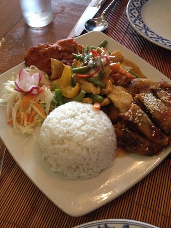 Rama Thai: Rice; duck in plum sauce;chicken in a curry style sauce and pakora veg.