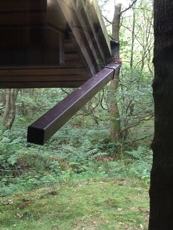 Chevin Country Park Hotel & Spa: Guttering in need of repair