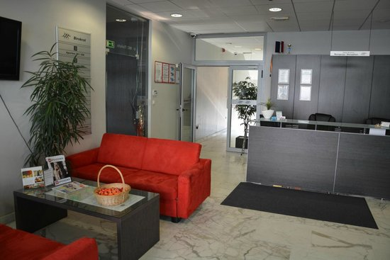 Birokrat Hotel: La réception