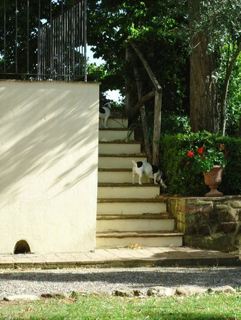 Santa Maria a Poneta : Treppe zur Rezeption