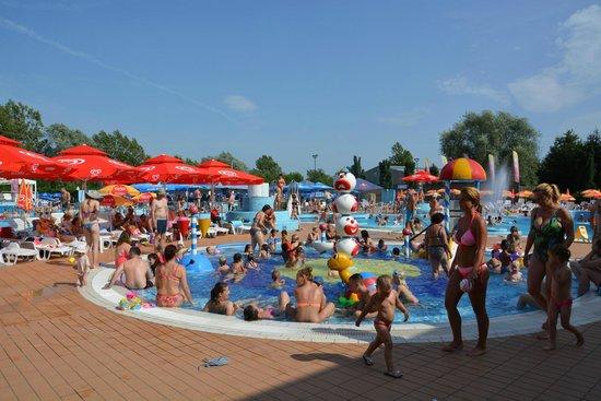 Birokrat Hotel: La fameuse piscine publique