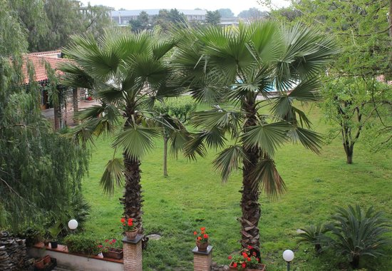 Agriturismo Vivinatura : vista dalla terrazza verso parco interno