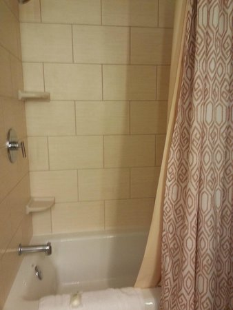 Disney's Polynesian Village Resort: Shower/bath