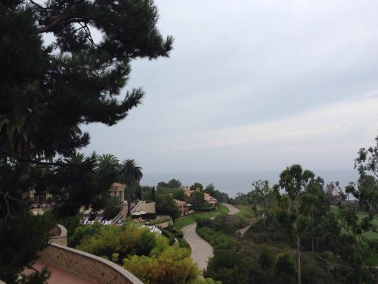 The Resort at Pelican Hill: View