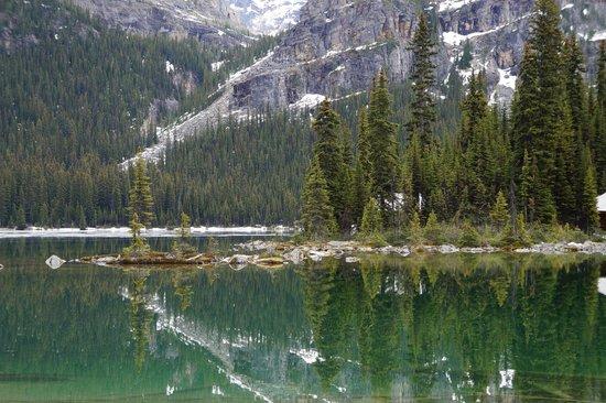 Lake O' Hara: Magic Mirror