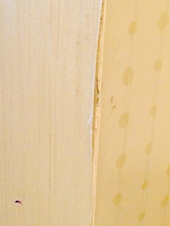 Homewood Suites Dayton-Fairborn (Wright Patterson) : Anyplace there is wallpaper -- it is pealing! Room 3202