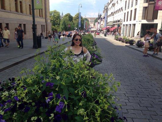 Karl Johans gate: Along the Karl Johan street