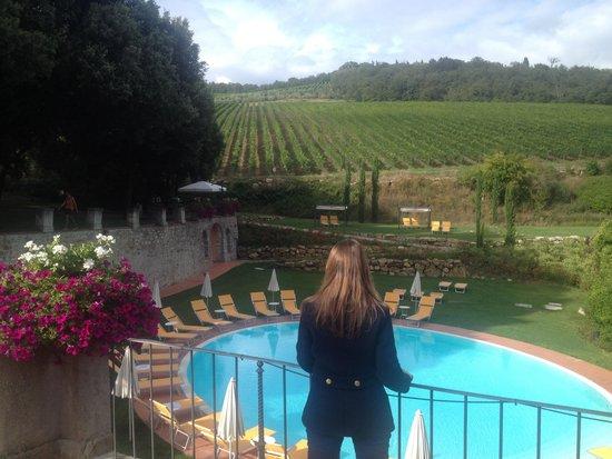 Hotel Villa Campomaggio Resort & Spa : View Of the pool.