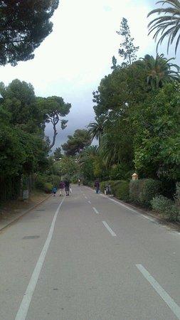 Pista Ciclabile Area 24 - Sanremo: Pista ciclabile