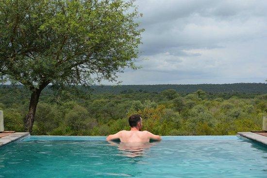 Casart Game Lodge: Piscine avec vue sur le Kruger