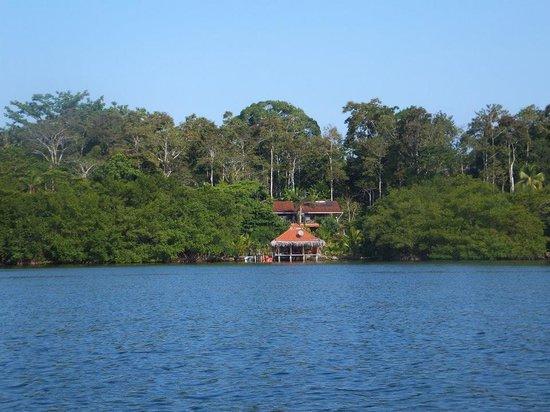Dolphin Bay Hideaway: The hideaway...