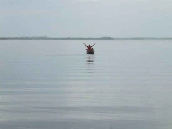 Dolphin Bay Hideaway: Hiring out the canoe...