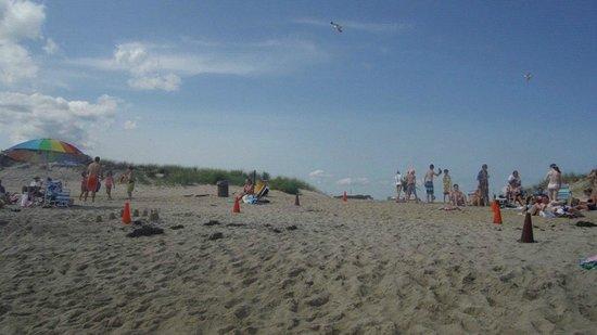 South Beach: Sand Area