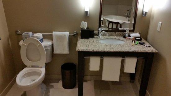Andaz Savannah: Bathroom Sink