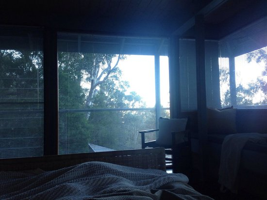 Bombah Point Eco Cottages: View from bed early in the morning.