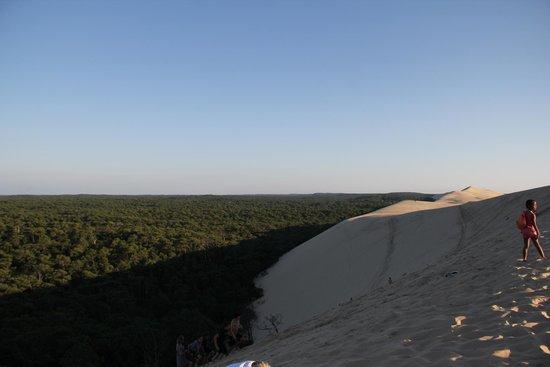 Dune du Pilat : Back side of dune de pilat