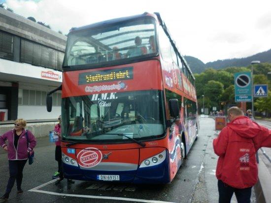Roedne Fjord Cruise: hop on hop off bus