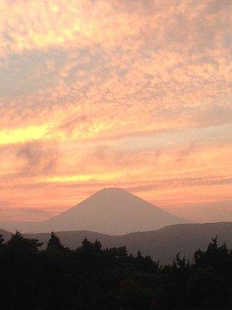 Hotel Green Plaza Hakone : ホテルの庭から眺めた富士山