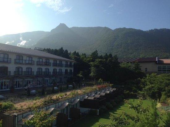 Hotel Green Plaza Hakone : 部屋からの眺望