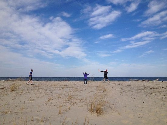 Lusby, MD: playing frisbee after hunting for shark teeth
