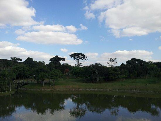 Jardim Botânico de Curitiba: Jardim Botanico de Curitiba