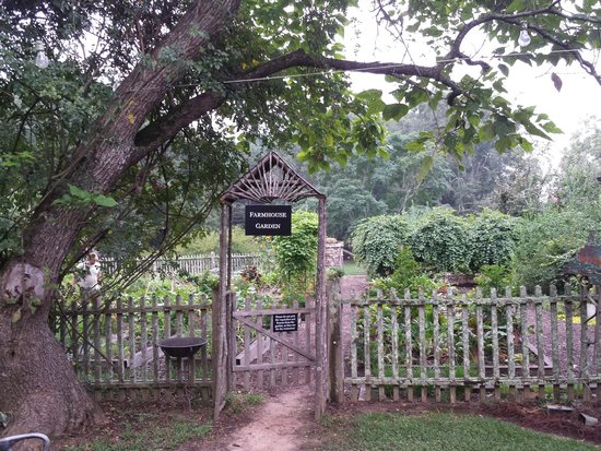 Inn at Serenbe: The Garden where much of the food served in the restaurant is grown