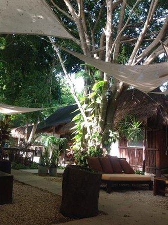 Secret Garden Hotel: jardin