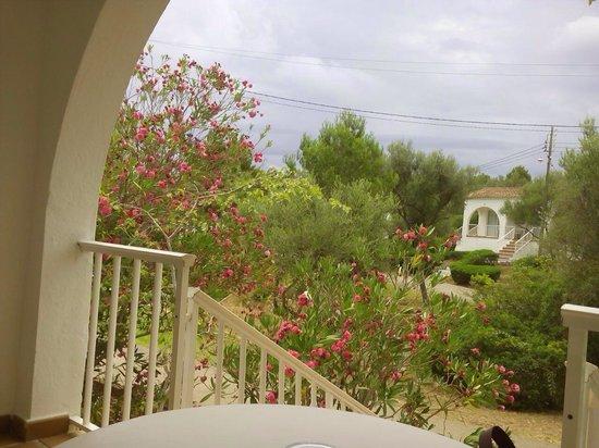 Club Hotel Tropicana Mallorca : Terracita de la habitación